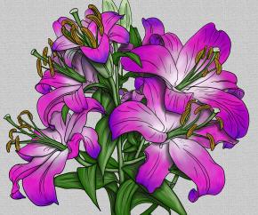 sketch-1562196643177