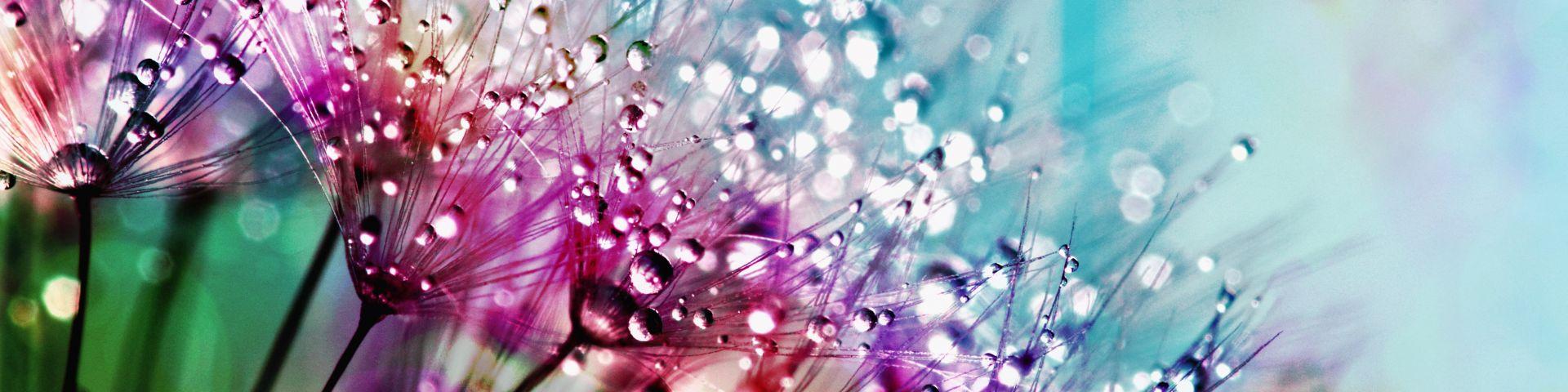 beautiful-blur-blurred-background-794494
