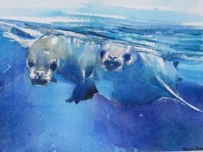 twin-seals
