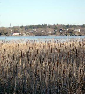 Lake Ontario Bliss