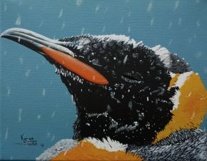 KS575 One Cold Penguin