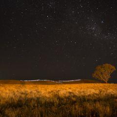 LUNETTE LIGHTS 3-5 by Anna Sande