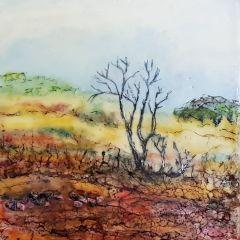 Arckaringa landscape SA by Marijke Gilchrist