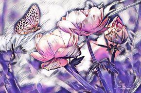 How Butterflies got their happiness