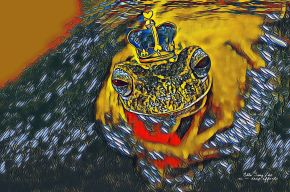 How king Frog see the world with delight