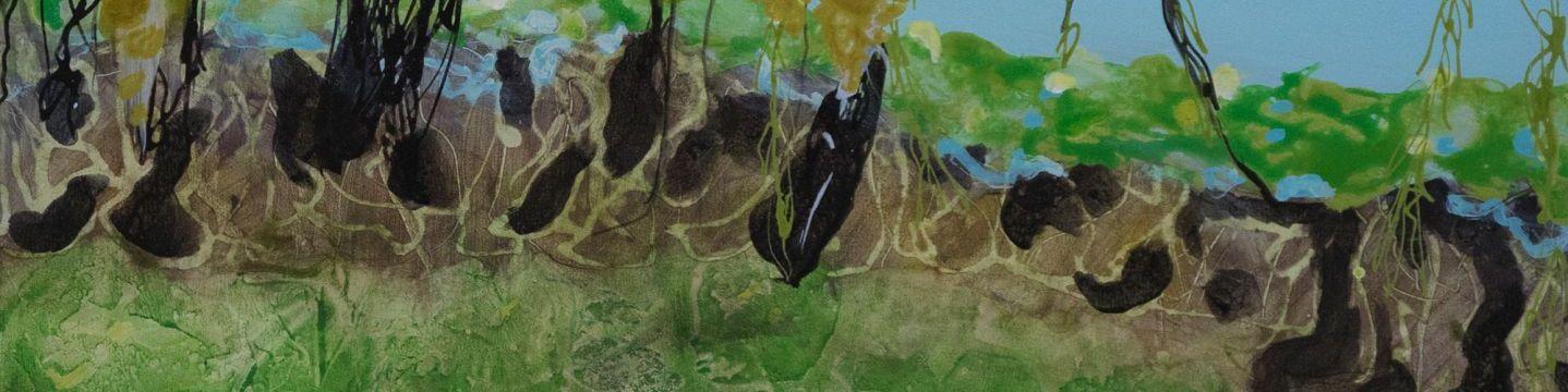 Lotus Dreaming 76cm x 76cm by Artist Wendy Grace
