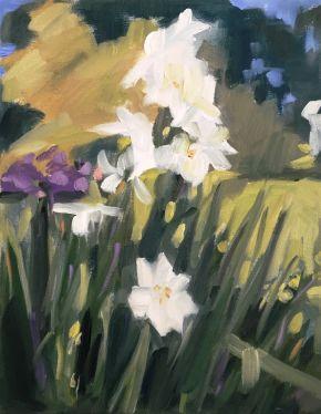 Iris, Botanical Gardens, Shelley Hall