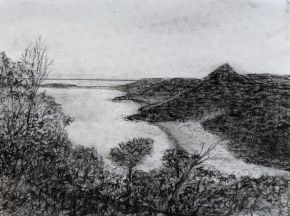 View South From Tomaree Mountain by Ted Dwyer