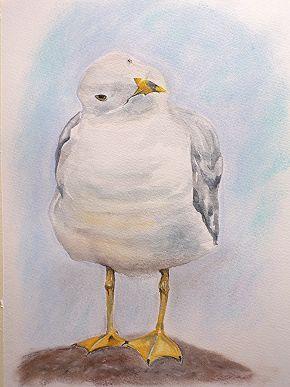 Cheeky Seagull Step 4
