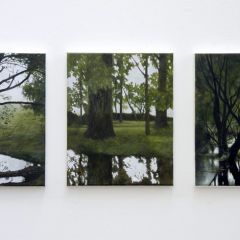 Installation 2011 by Angie de Latour
