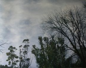 Shelterbelt #3 2011 by Angie de Latour