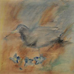 Bowerbird 1 2012 by Ann Shenfield
