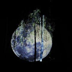 tracing-moonlight-plimsoll