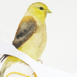Goldfinch detail upcoming Tenlawson exhibition