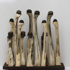 cream-anemones by Liz Walker