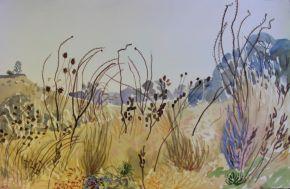 albany-art-prize