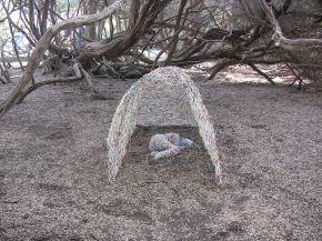 Shelter by Fleur Brett