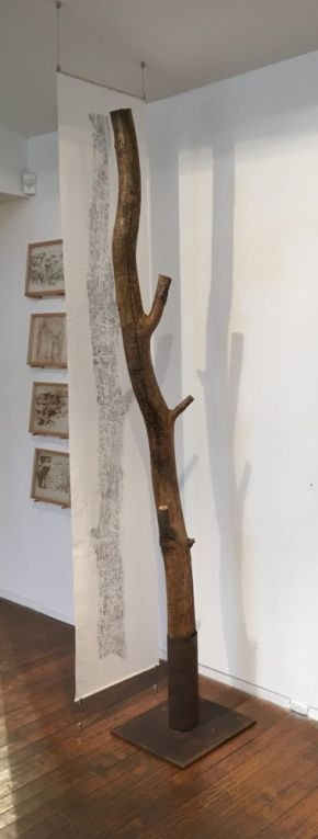 Black wattle tree trunk from Sawpit camp with suspended drawing by John Wolseley