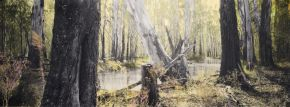 budgee-creek-ii--barmah-national-park