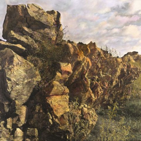 Quartzite ridge – Shelter I by Nici Cumpston