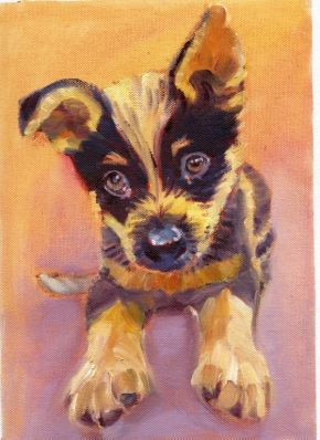 Molly the blue heeler pup by Susan Piesse
