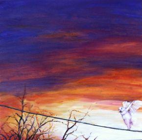 whitebird-landing