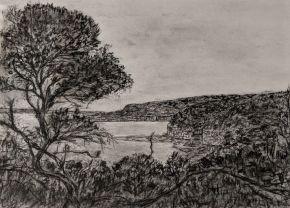 Bouddi Trail by Ted Dwyer