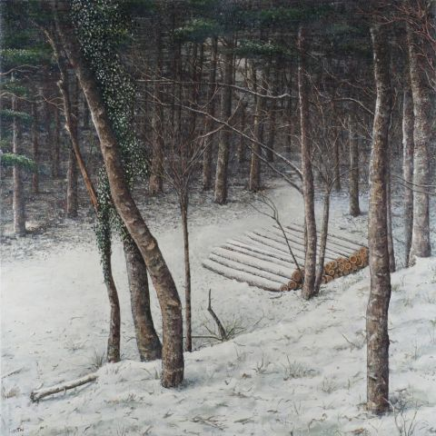 logs-in-a-forest--16--oil-on-canvas--200x200cm---30-500--1-