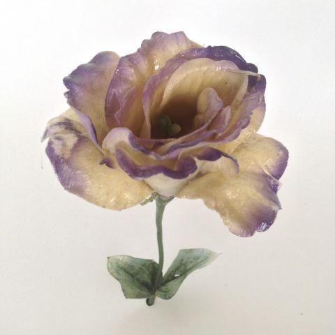 Purple Grave Flower by Sarina Lirosi