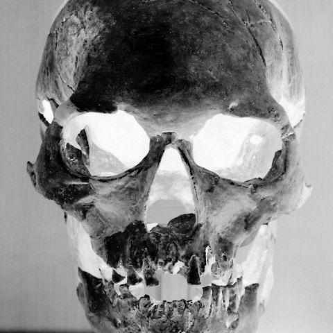 skull-b-w