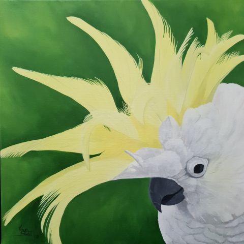 KS581 Cockatoo Crown