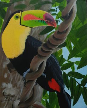 KS561 One Can Toucan