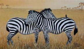 KS555. Zebra Crossing